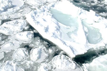 2月22日流氷2