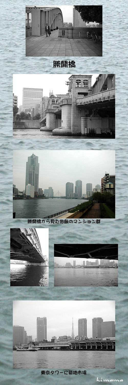 11月7日晴海2