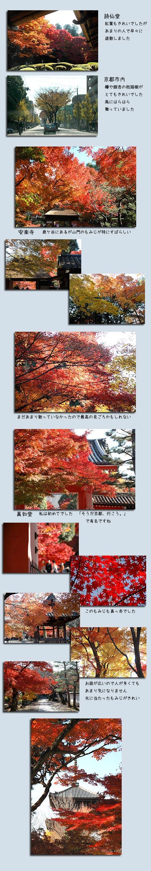 12月4日京都1