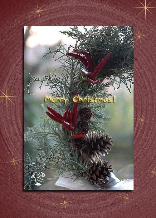 12月24日メリークリスマス