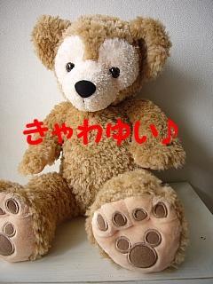 conv0005_20080606102827.jpg