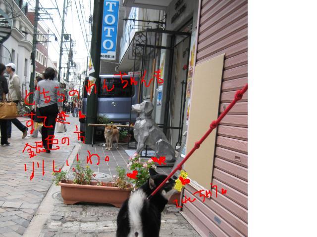 snap_kinakobiyori_20081011623.jpg