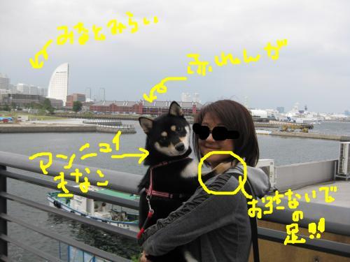 snap_kinakobiyori_200810116839.jpg