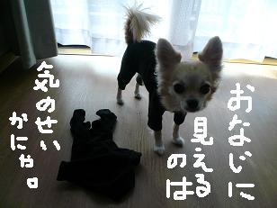P1010535-deji.jpg