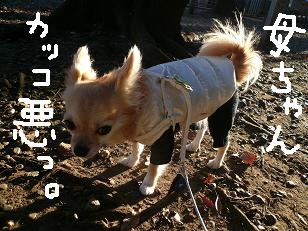 P1020459-deji.jpg