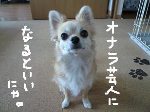 P1030856-deji.jpg