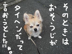 P1040267-deji.jpg