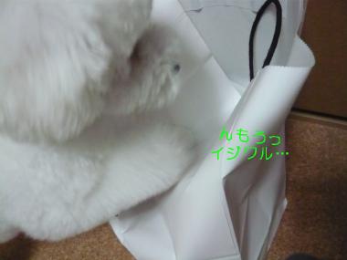 313_20080706225729.jpg