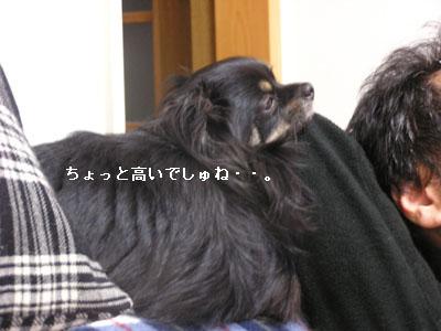 '09.2.9・2 コピー