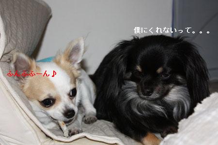 IMG_0490・2 コピー
