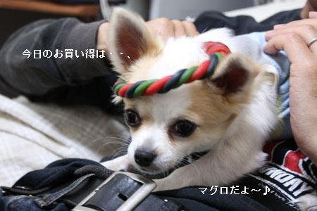 IMG_0510・2 コピー