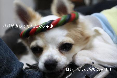 IMG_0519・2 コピー