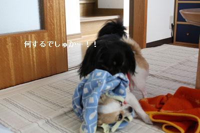 IMG_1328・2 コピー