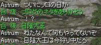 091116日陰大王2