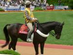 誘導馬の1頭、ファンドリリョウマ