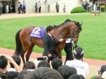 産経大阪杯勝ち馬のドリームジャーニー