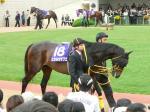阪神大賞典2位に入った上がり馬ヒカルカザブエ