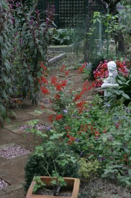 2008-11-03_08.jpg