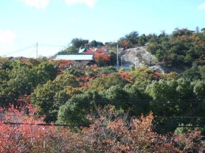 2008-11-19_00.jpg