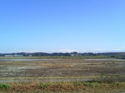 2008-12-01_00.jpg