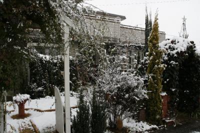 2008-12-26_02.jpg