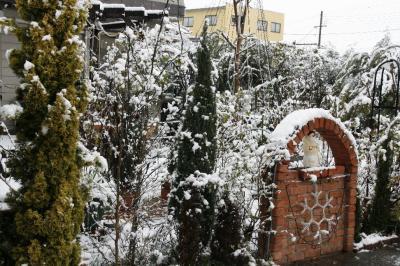 2008-12-26_03.jpg