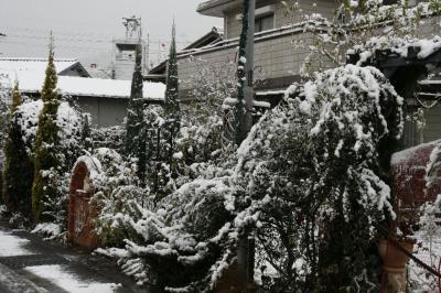 2008-12-26_06.jpg
