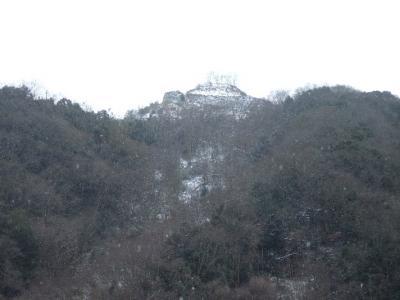 2009-01-15_27.jpg
