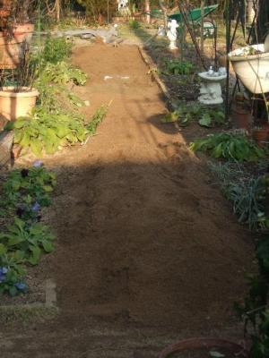 2009-01-17_10.jpg