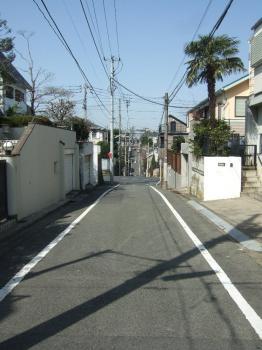 2009-03-21_09.jpg