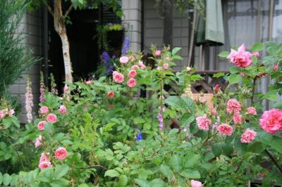 2009-05-18_09.jpg