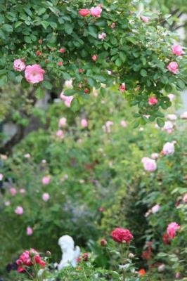 2009-05-19_51.jpg