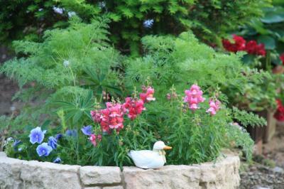 2009-05-19_61.jpg