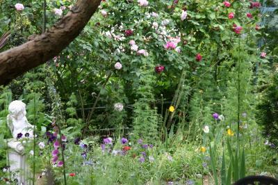 2009-05-22_47.jpg