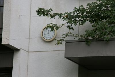 2009-05-30_26.jpg