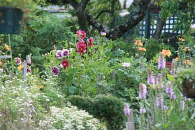 2009-07-14_13.jpg