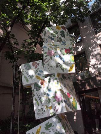 六花亭本店2