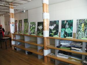 fuji (1)