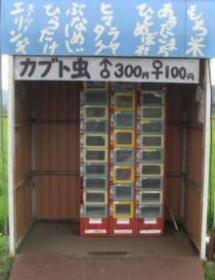 カブトムシ自動販売機
