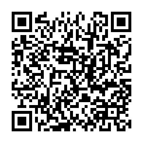 junkQRcode.jpg