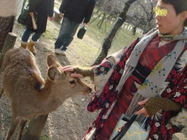 鹿なでなでエビ子さん!
