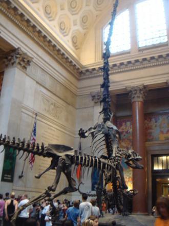 恐竜くん、お出迎え!