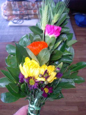 花も新鮮や