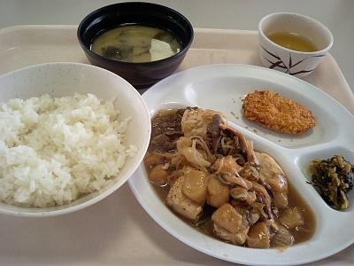 肉豆腐~( ^o^)