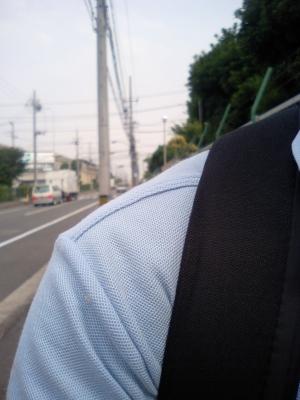 日曜ぐらい休ませろや!日本橋でも行きたいんじゃ~!(ー_ー)!!
