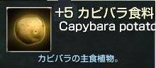 カピバラ+5