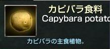 capture_00120.jpg