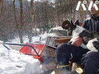 2008_0106雪遊び0015.2