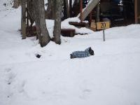2008_0127雪遊び0005