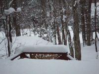 2008_0224豪雪0001